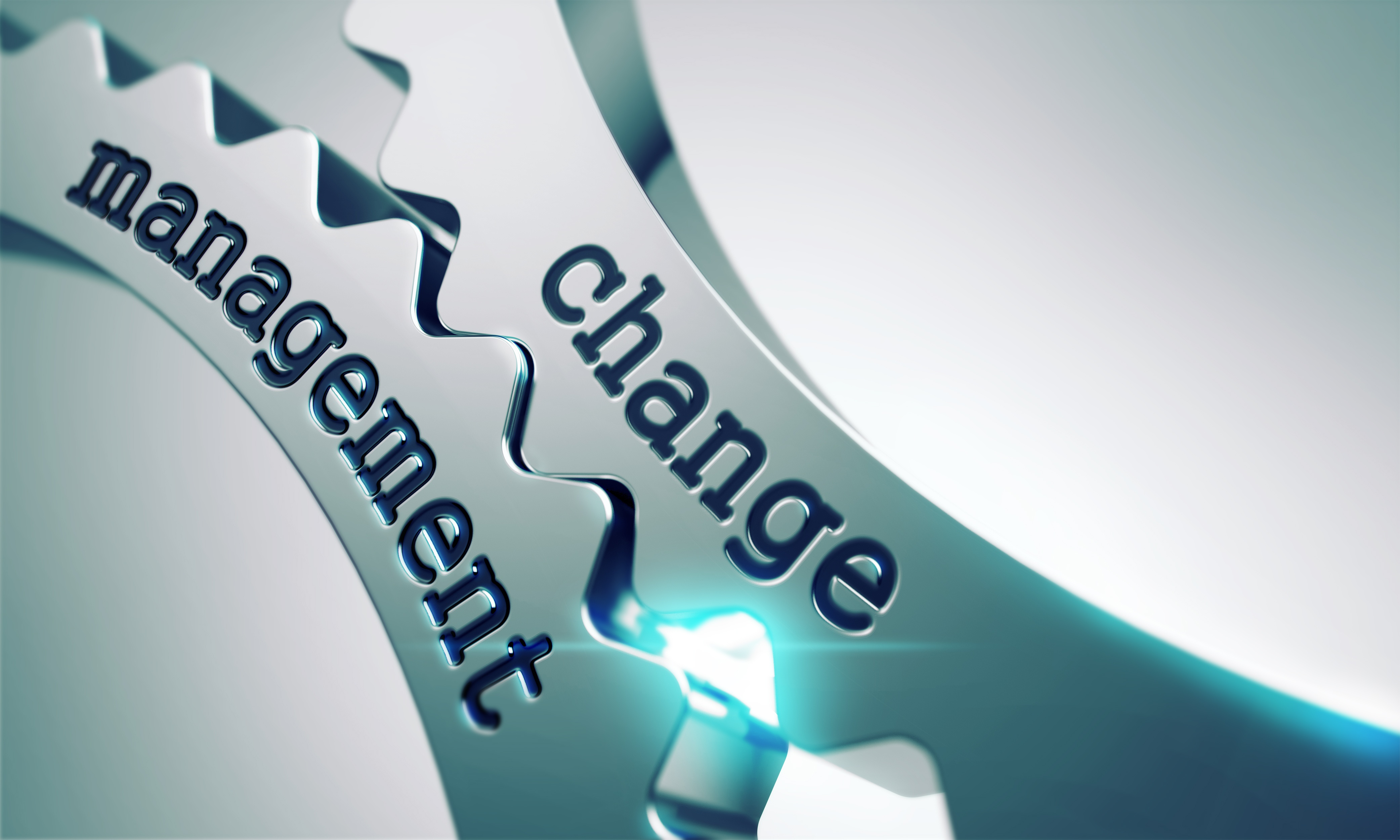 Change Management Gears